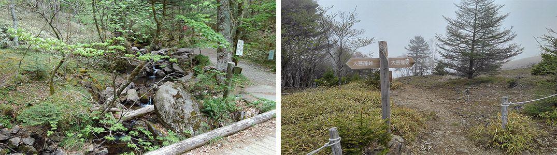 登山道のイメージ