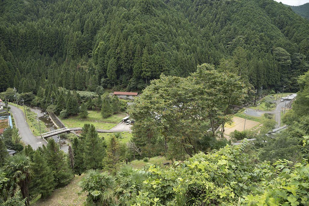 紀伊細川駅の眺望