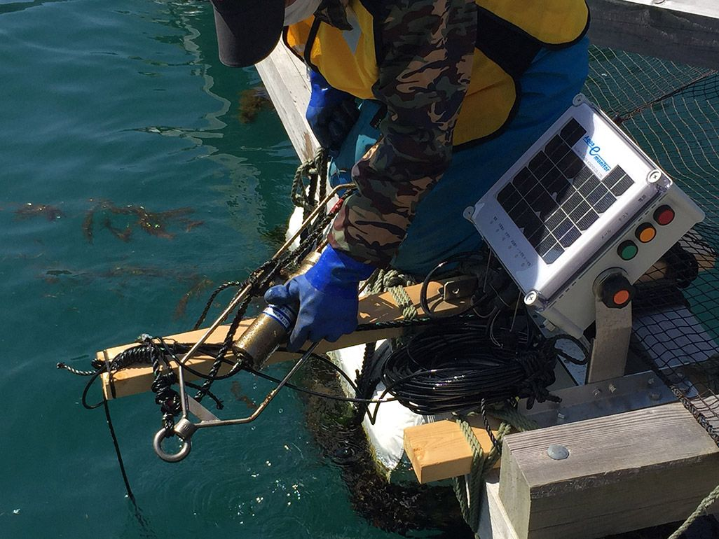 サバの養殖場に設置したセンサー