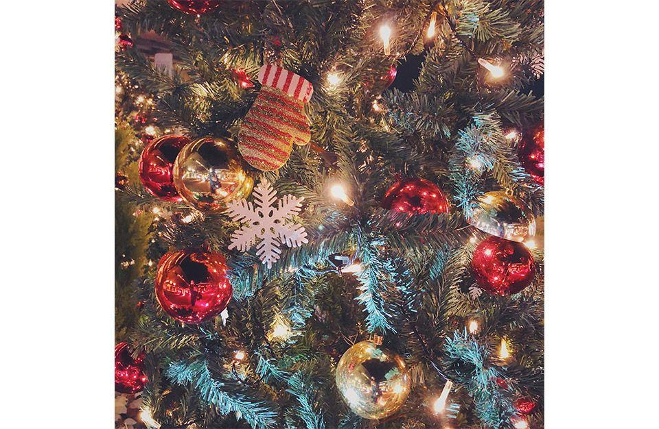 クリスマスツリーを撮影