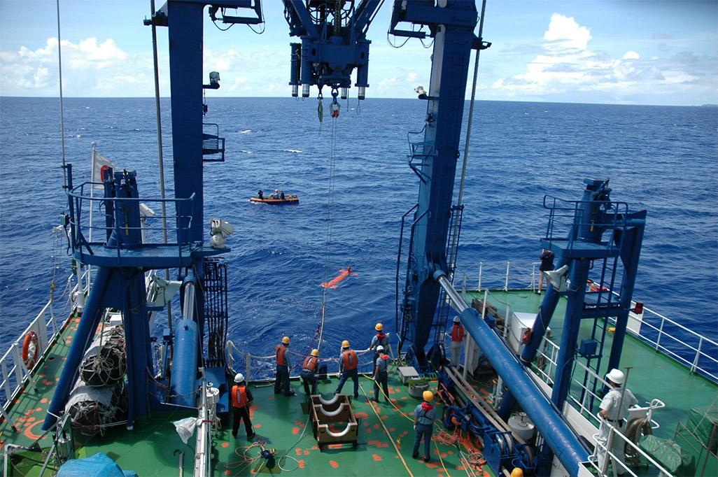 小笠原海域でのクジラ観測の模様