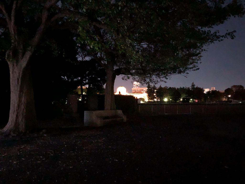 iPhone Xで夜の公園を撮影