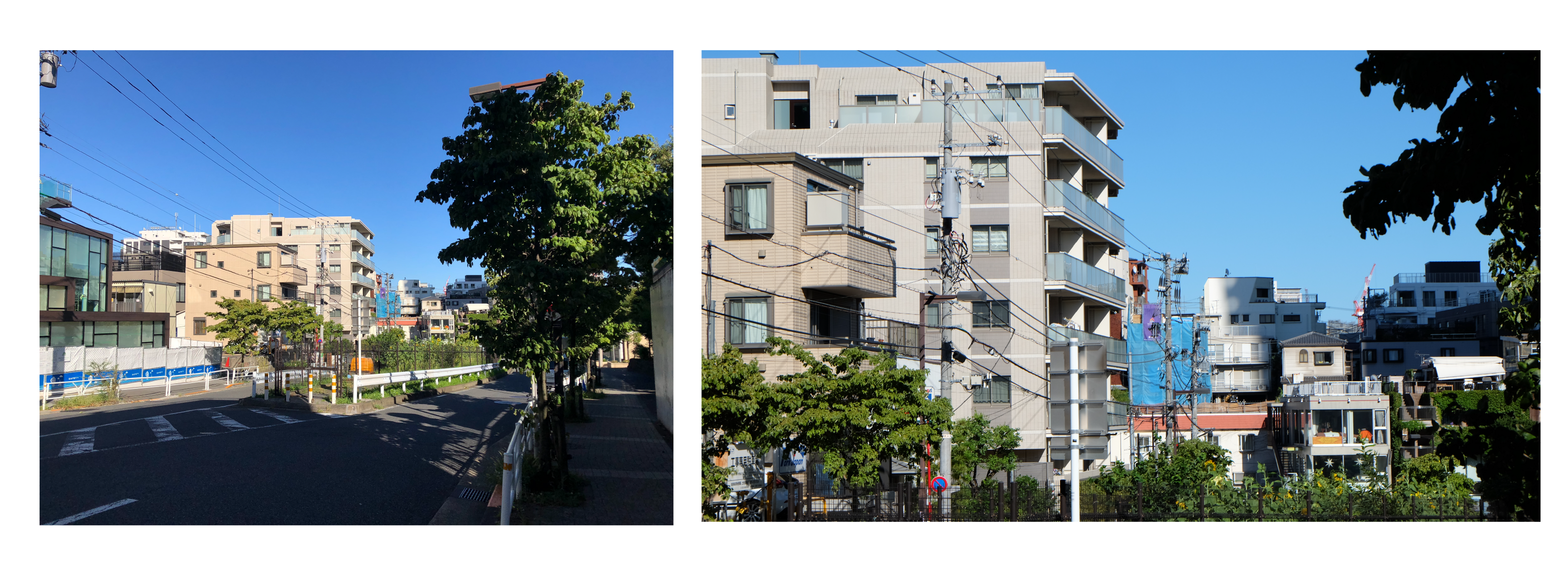 iPhone 8と一眼カメラの写真比較