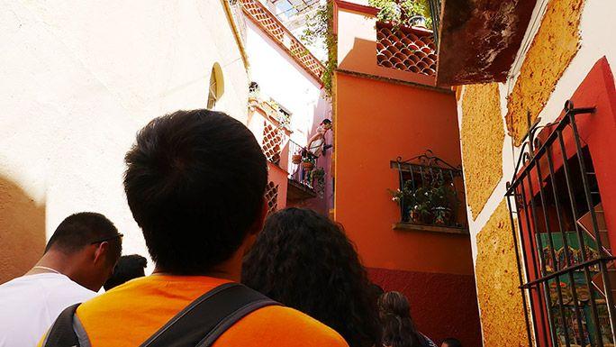 グアナフォトを観光する地主