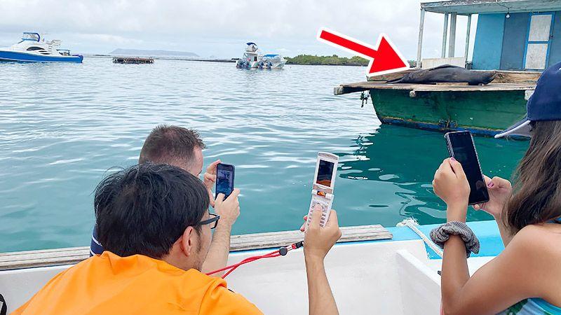 船の上から携帯を構える地主とツアー客