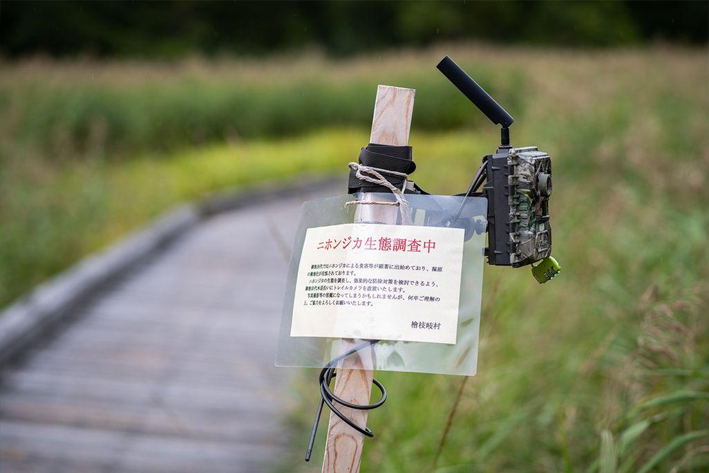 尾瀬・御池田代エリアに設置されたKDDIの自動撮影カメラ
