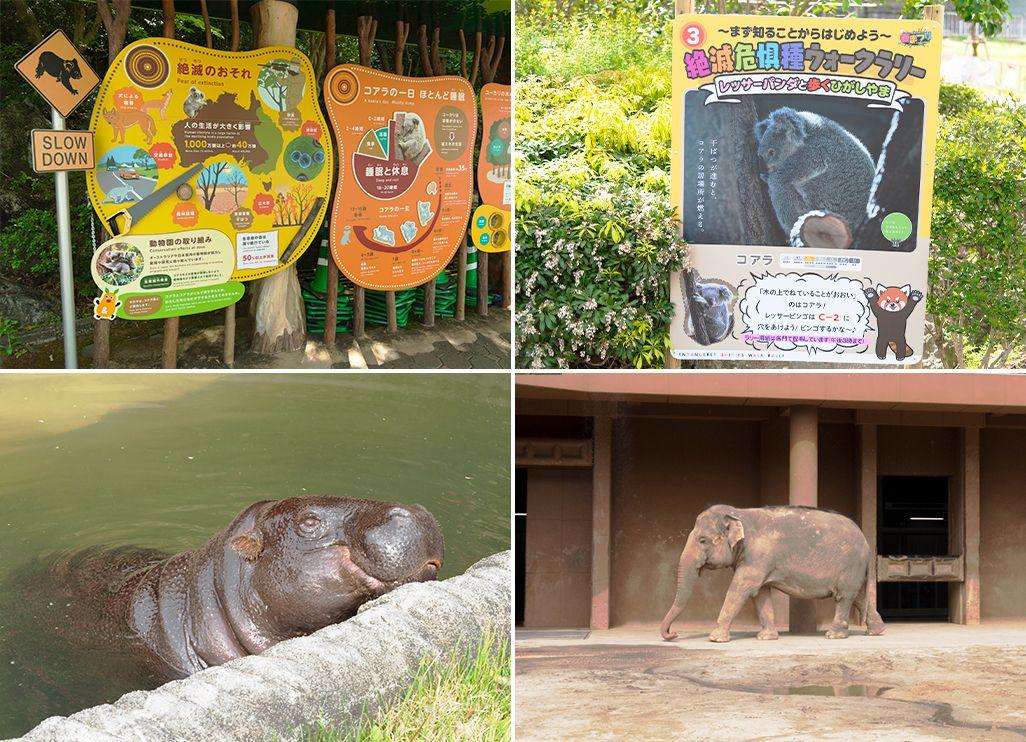 東山動植物園の園内表示
