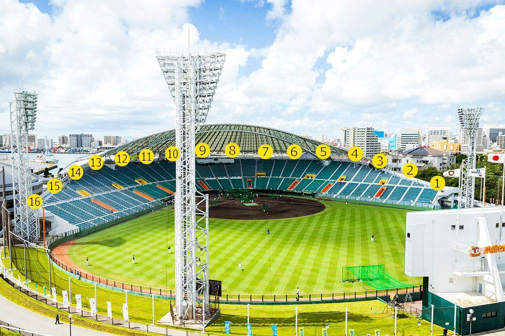 沖縄セルラースタジアム那覇のグラウンド