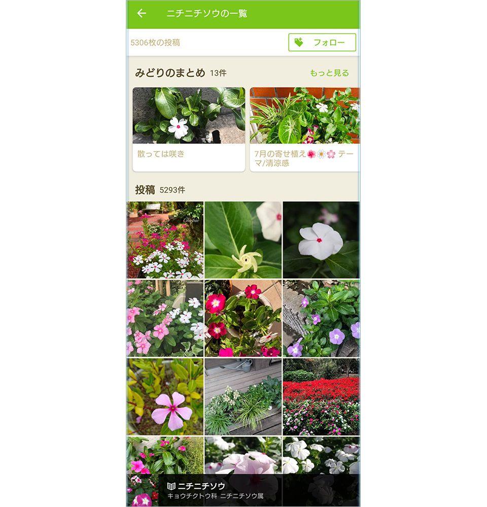GreenSnapの画面