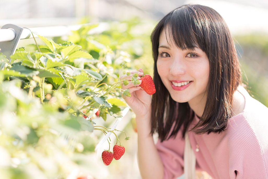 「高梨農園」でイチゴ狩りをする伊藤桃