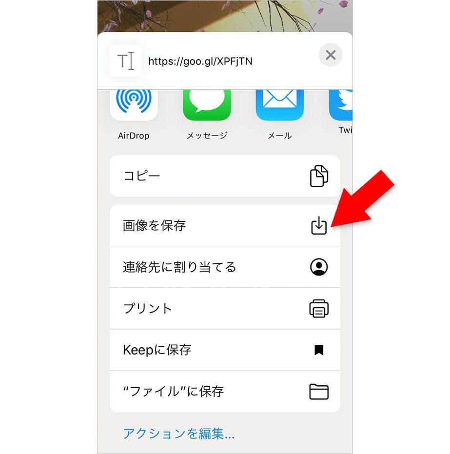 ARアプリ「AR花見」の写真を保存
