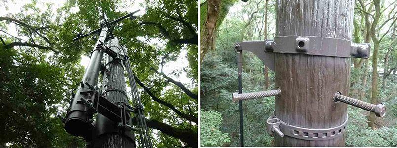 ウッド調の擬木柱の基地局
