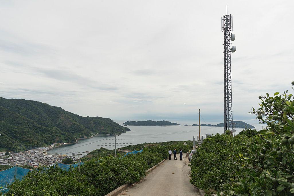 宇和島市のみかん山から湾を見下ろす基地局