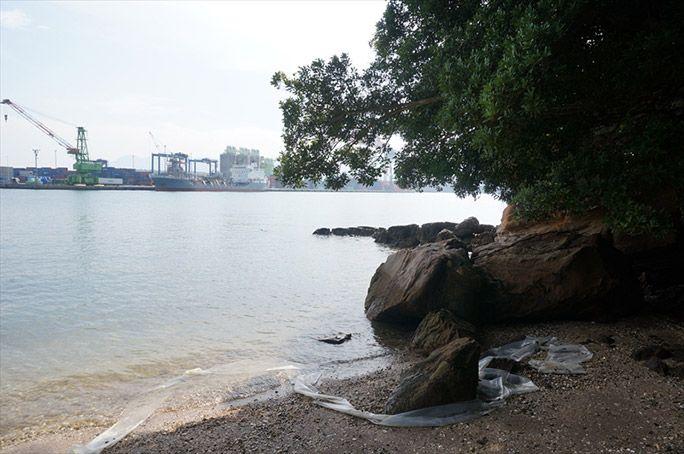 無人島の風景