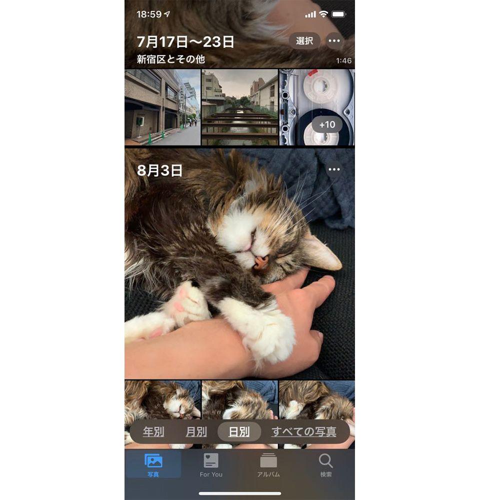 iOS13「写真」アプリの表示