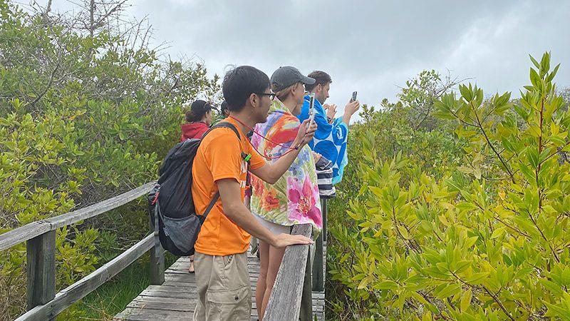 橋の上から携帯を構える地主とツアー客