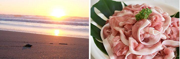 「Wowma! ふるさと納税」の返礼品である宮崎県新富町「宮崎県産豚肉5㎏切落し」