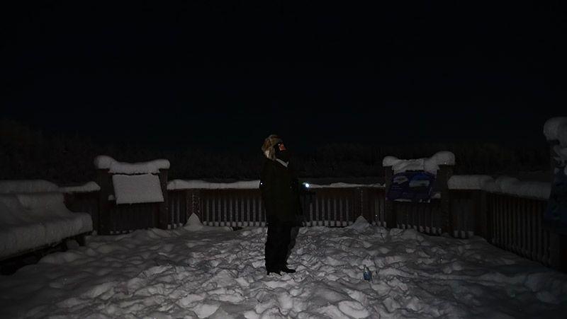 雪原の中で空を見上げてオーロラを待つ地主