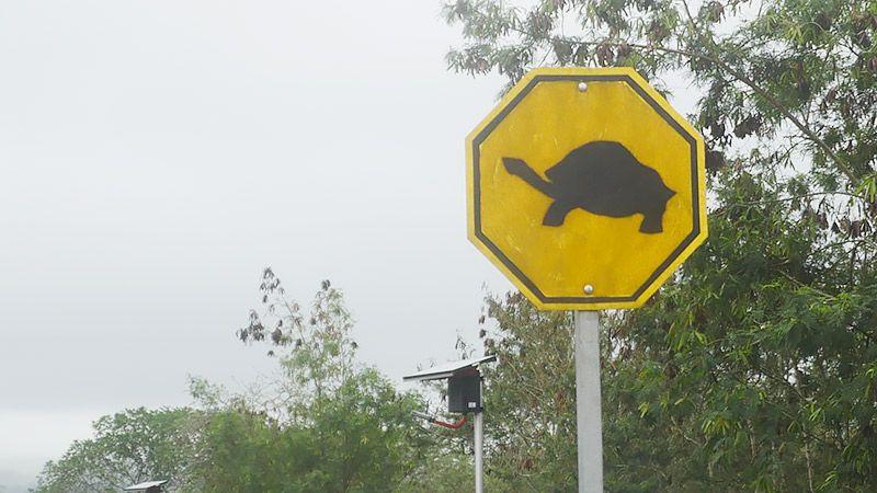 ガラパゴスゾウガメの標識