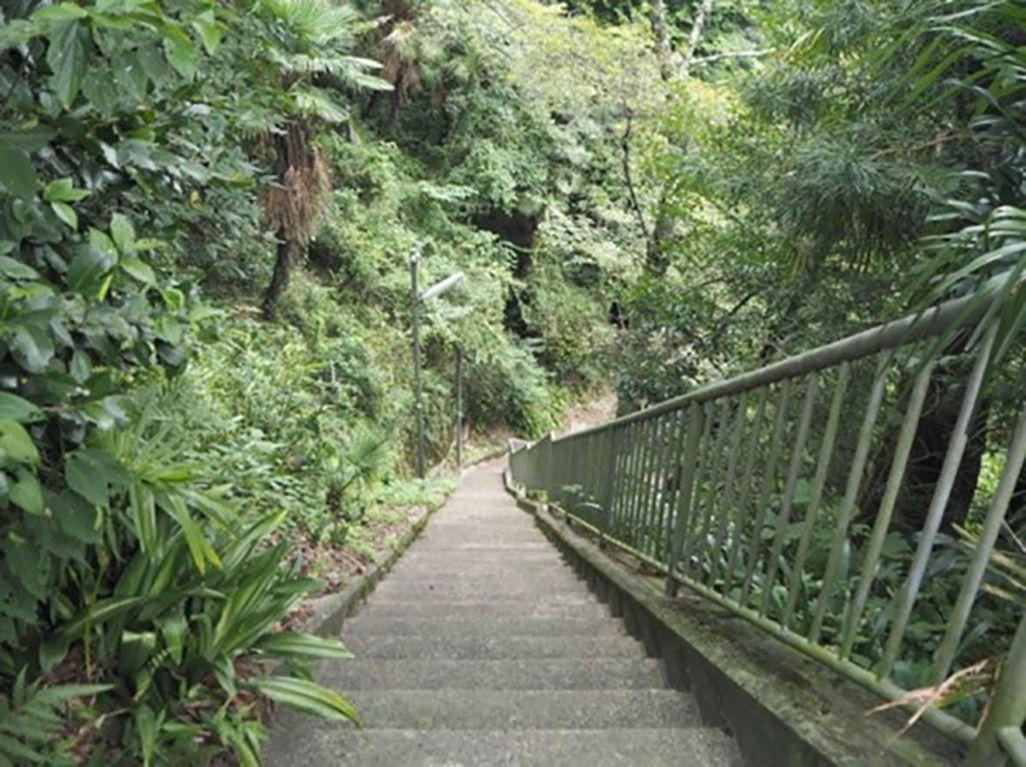 紀伊細川駅の急な階段