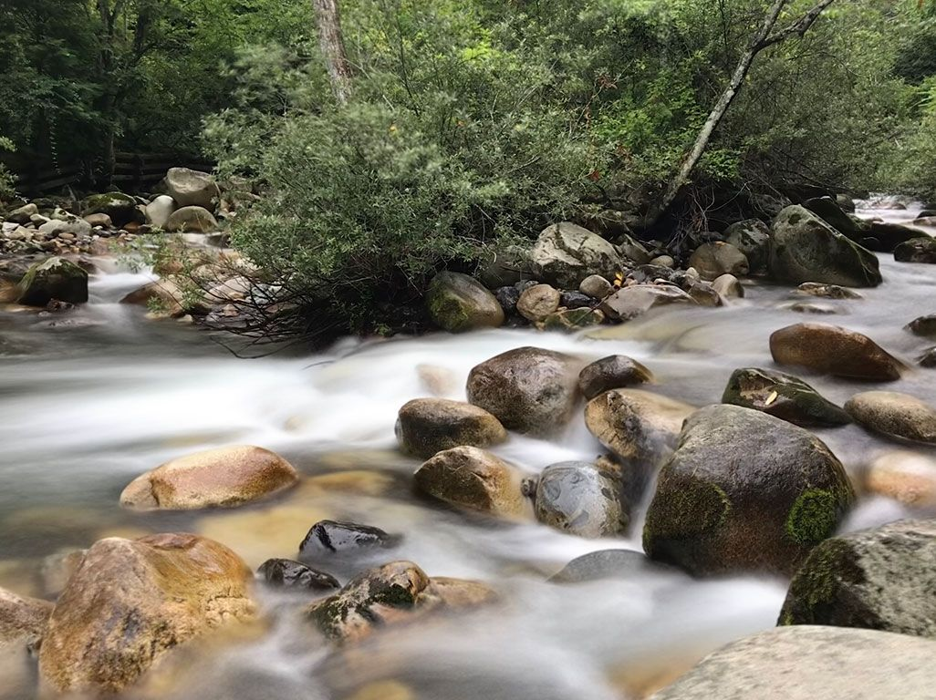 Live Photosの「長時間露光」で川の流れを撮影