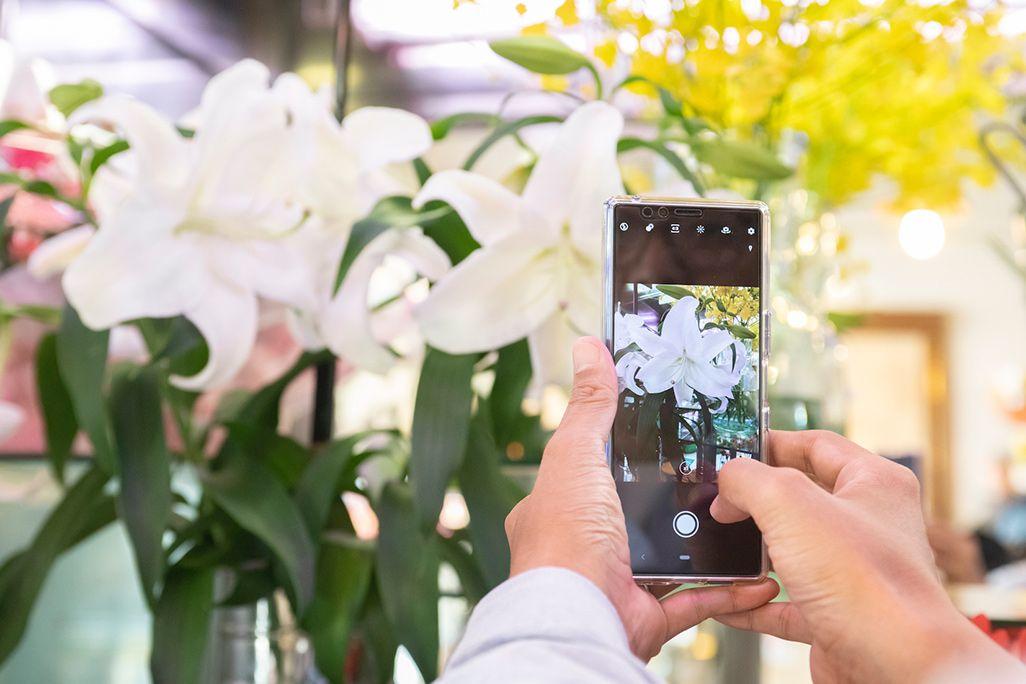 GreenSnapで花屋さんの花を撮影