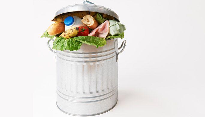 マッチングアプリが世界を救う!? 食料を廃棄する人、引き取りたい人を引き合わせるMealConnect