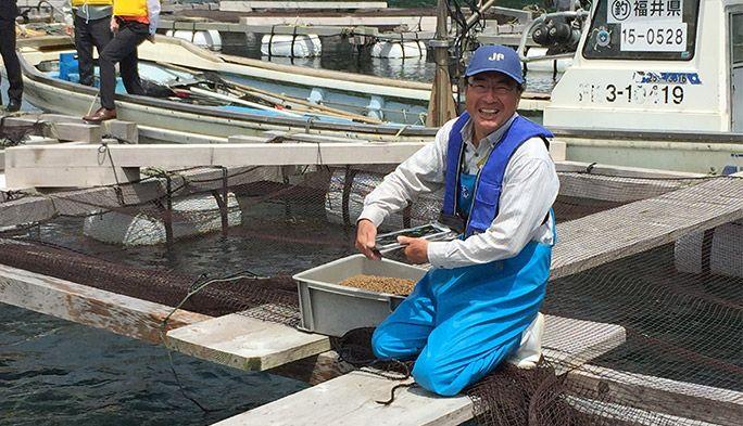 漁業の課題を通信のチカラで解決したい! IoTを活用したサバ養殖への挑戦
